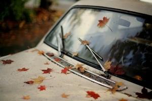 Fall Car